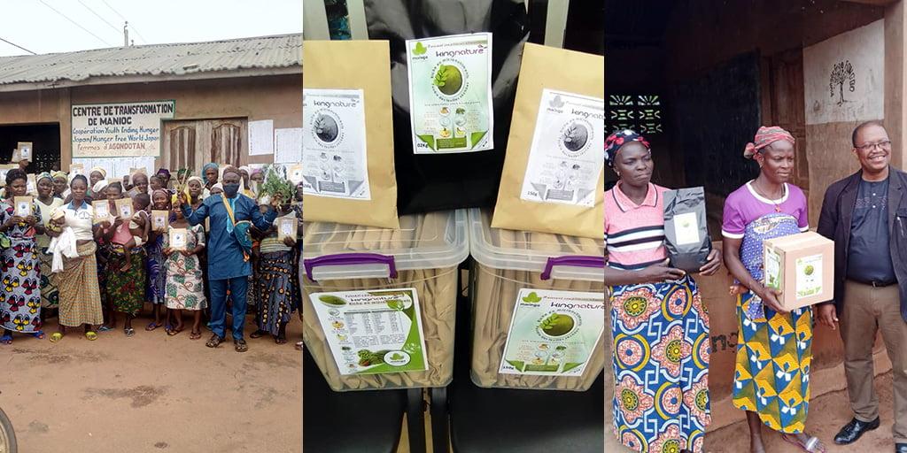 Ein Moringa-Projekt in Benin unterstützen und damit kostenloses Moringa für mangelernährte Kinder ermöglichen