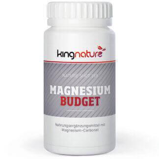 Magnesium Budget online kapseln Kaufen Schweiz v
