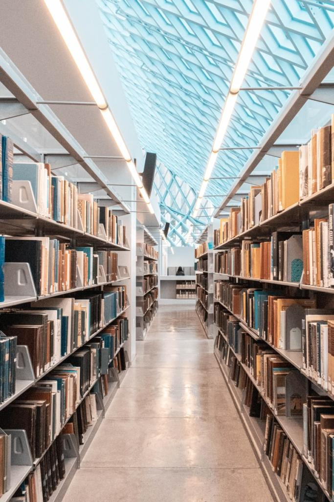 library, magazin, jungle of books